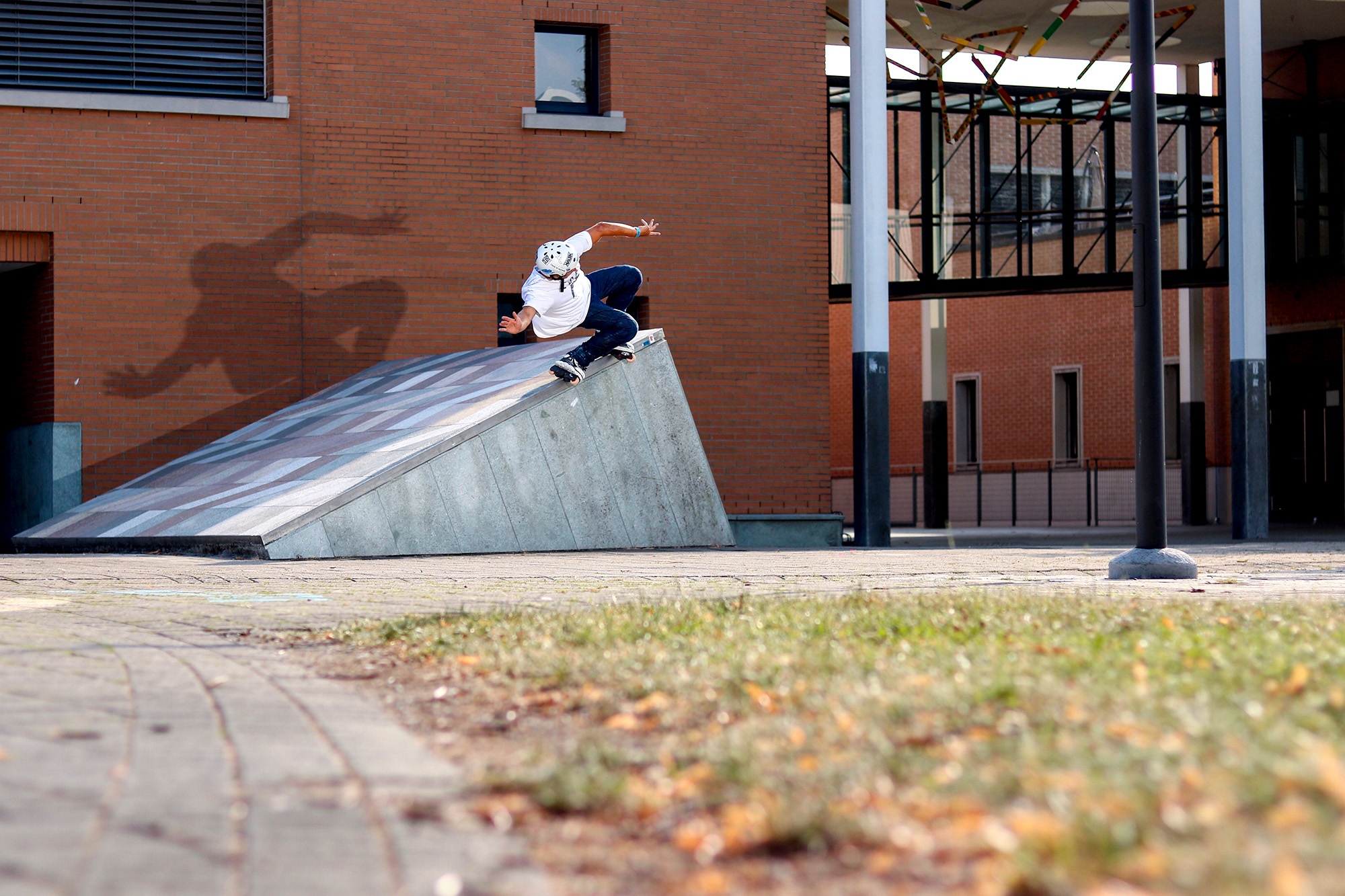 jan back nugen up - Skateboard Deckbank